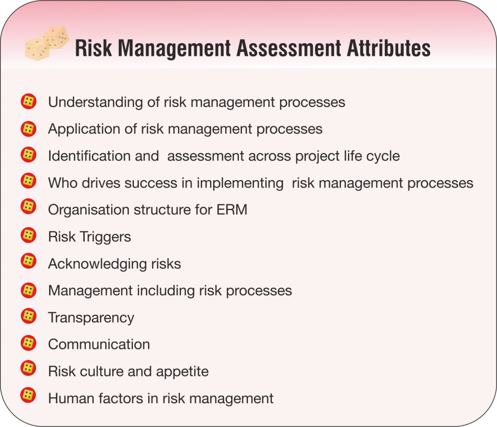 Risk Management Assessment Attributes